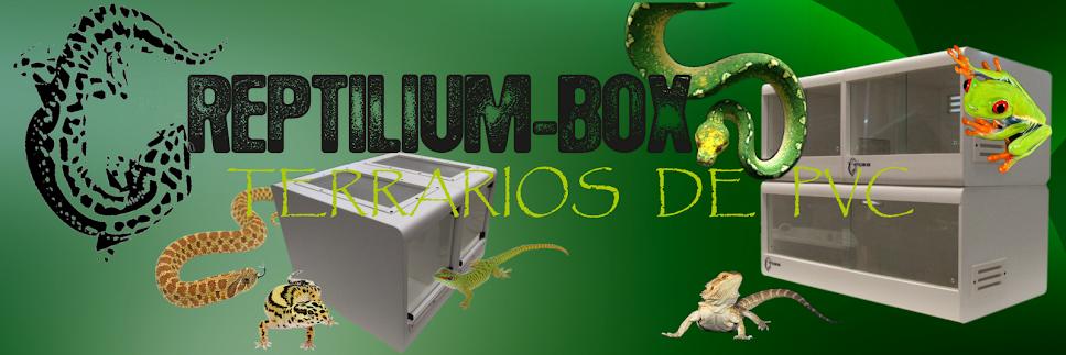 Reptilium-Box