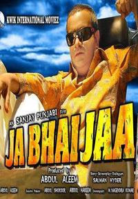 Ja Bhai Jaa 2011 Hindi Movie Watch Online