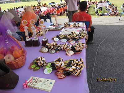 Kejohanan Sofbol MSS Terengganu 2013