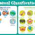 Animal kingdom: Vertebrates and invertebrates