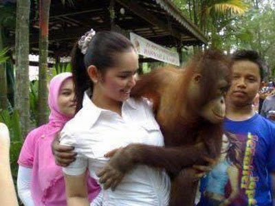 Buah dada Siti Nurbaya diraba