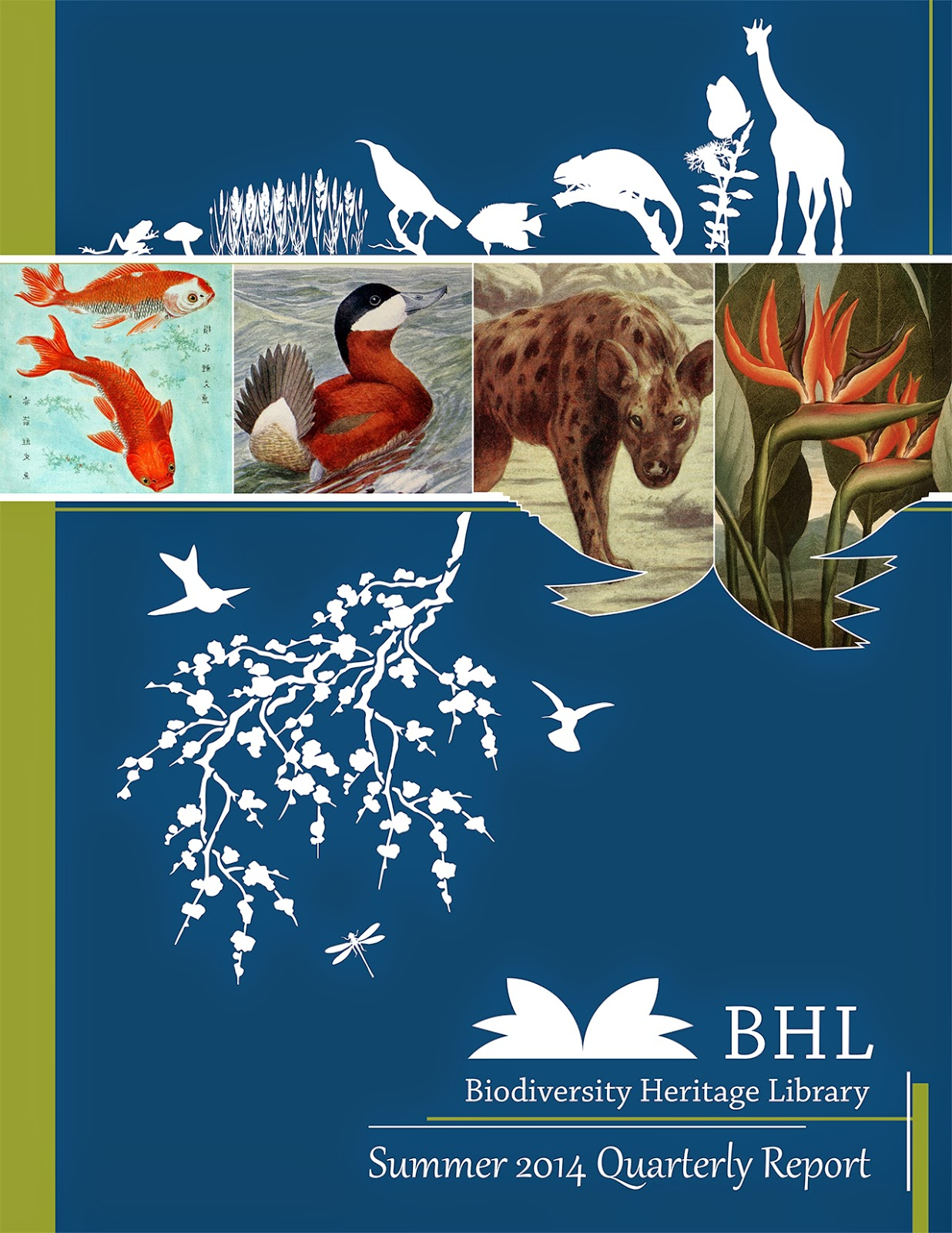 http://biodivlib.wikispaces.com/file/view/Q3%20FY14%20Quarterly%20Report.pdf/516885354/Q3%20FY14%20Quarterly%20Report.pdf