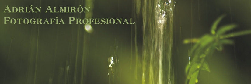 Adrián Almirón Fotografía Profesional