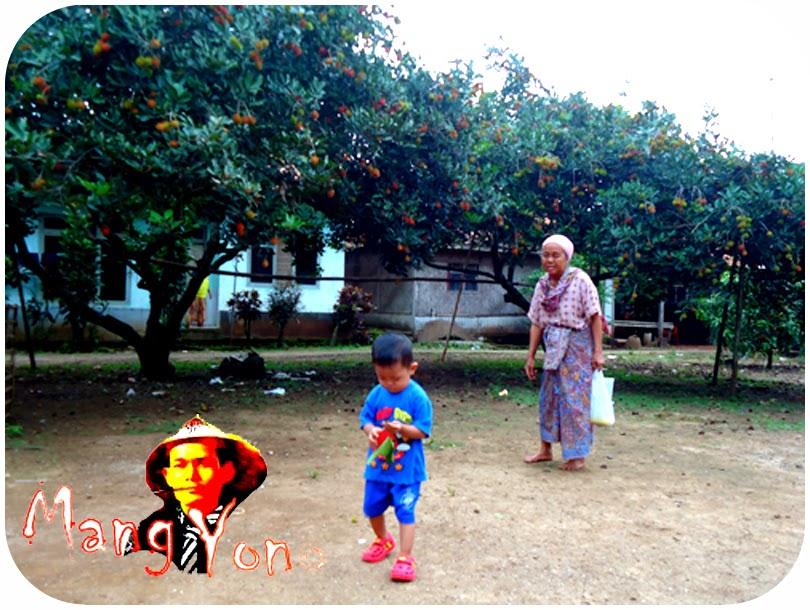 Tempat Bermain  Anak - Buah Rambutan Di Sekitar Rumah Saya Di Kabupaten Subang