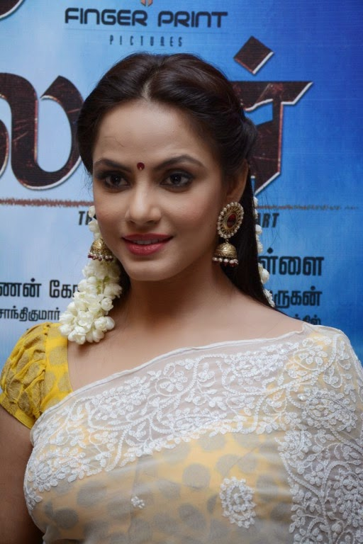 Actress Neetu Chandra In Saree Spicy Pics