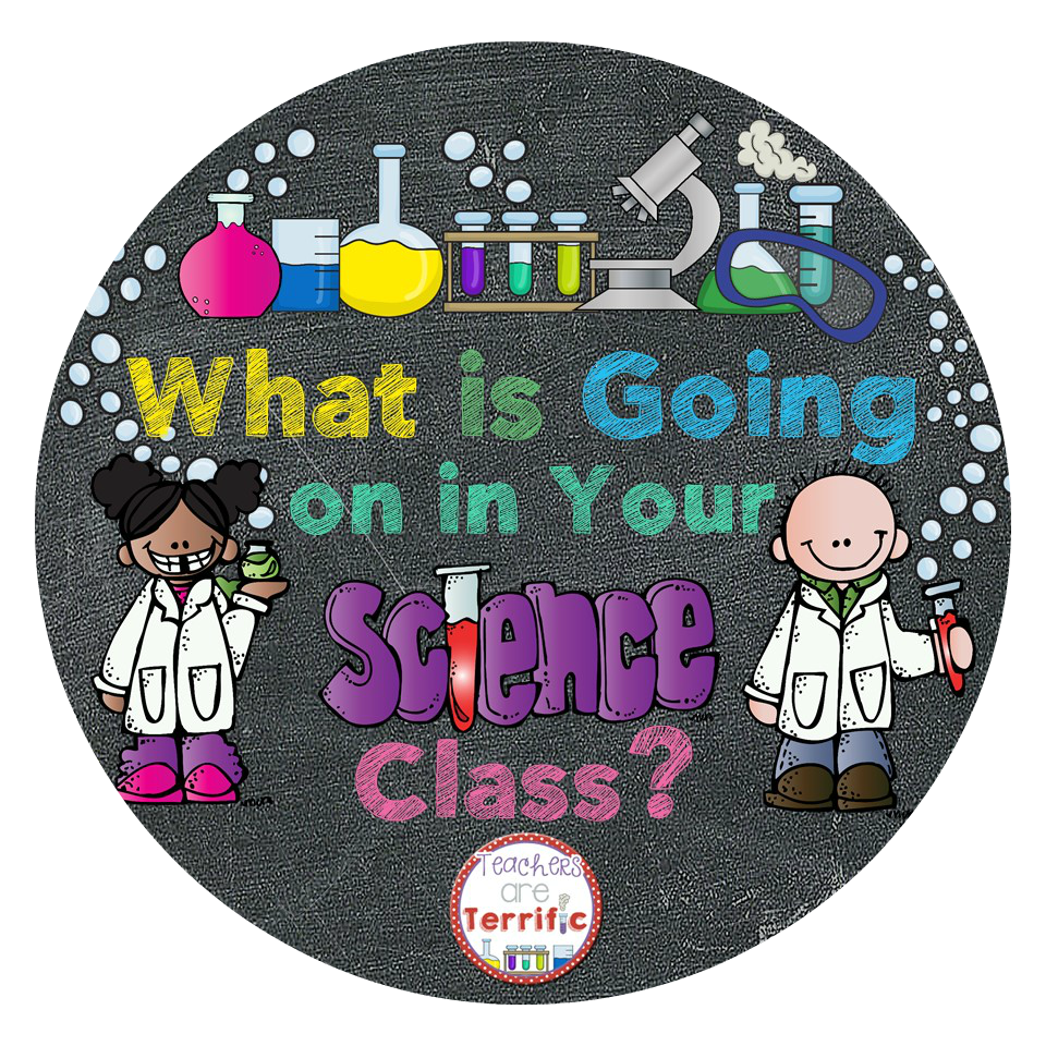 What's Going on in Your Science Class?
