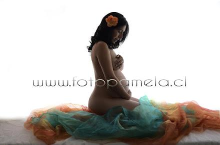 foto artistica embarazada providencia chile sesion fotos