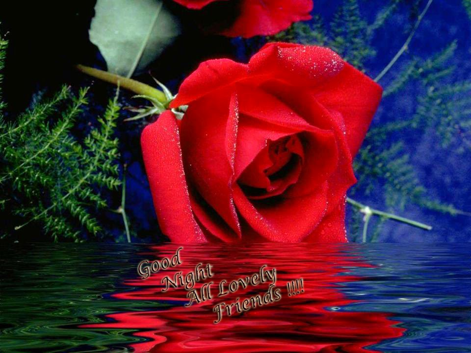 Good Evening Wallpaper With Love : good night love u wallpaper