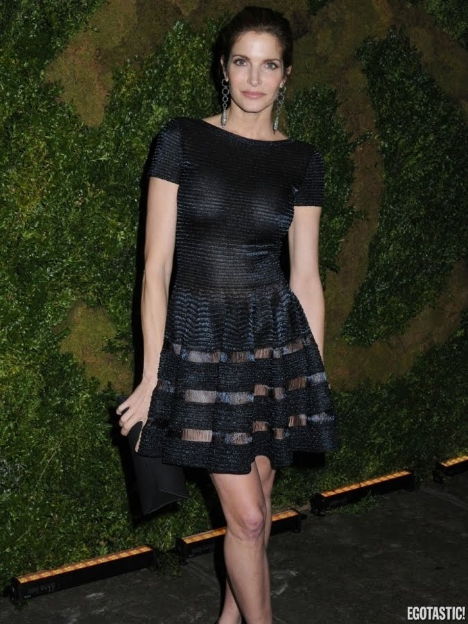 Stephanie seymour see through dress share your