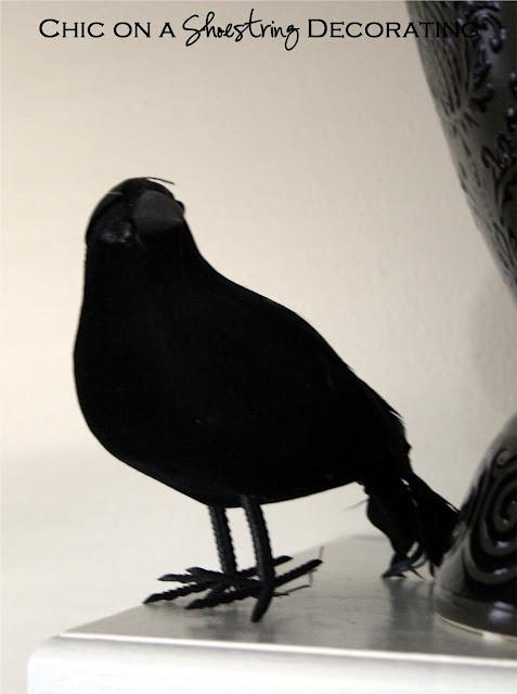 Halloween black bird