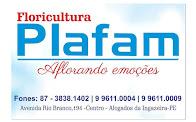 FLORICULTURA PLAFAM