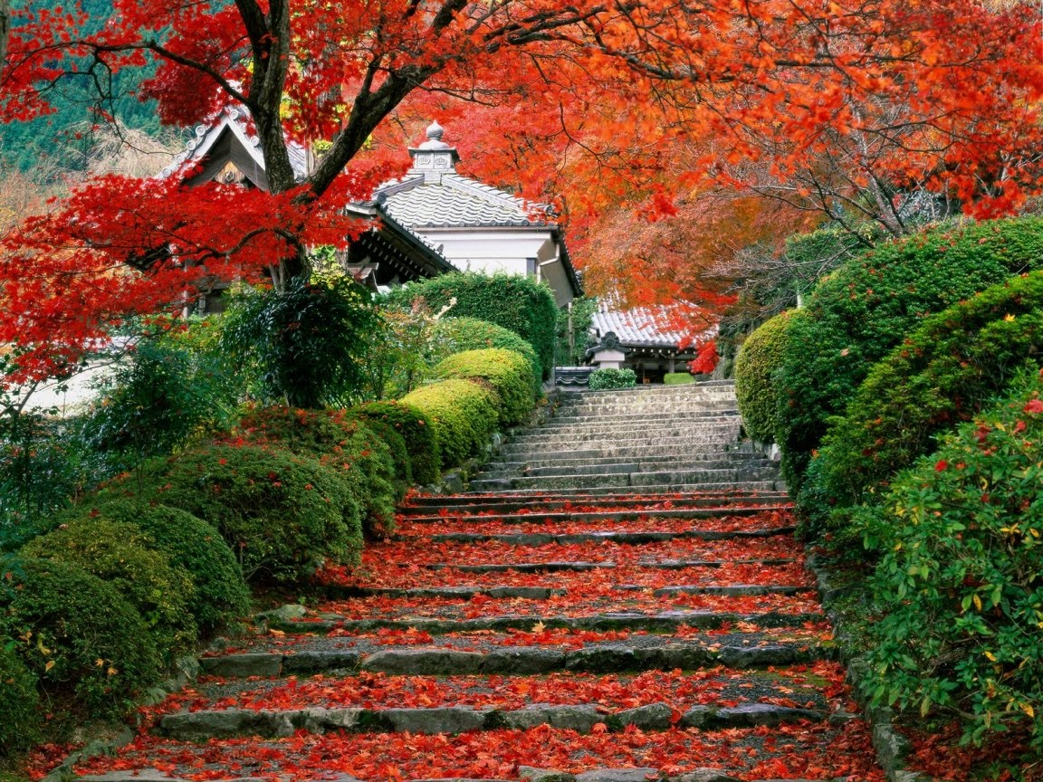 http://4.bp.blogspot.com/-LJXvGwDGJiY/Tc_wNFz6bkI/AAAAAAAAA_M/wxf8d2yaY_4/s1600/garden_wallpaper_garden_staircase_japan_wallpapers_5664_1152x864.jpg