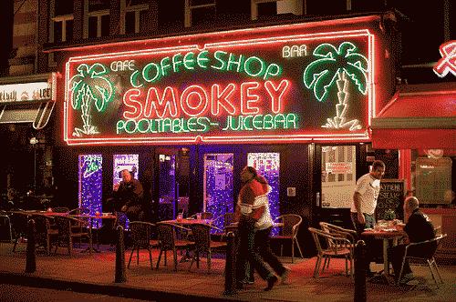 Kafe ganja di Belanda