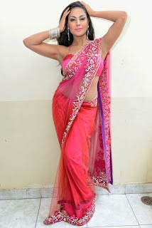 Veena malik Hot Photos in Pink Saree