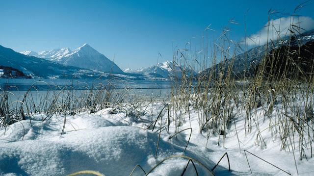 اكتشف بحيرة ثون في سويسرا