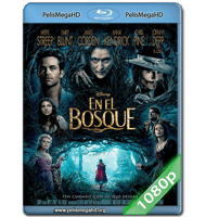 EN EL BOSQUE (2014) FULL 1080P HD MKV ESPAÑOL LATINO