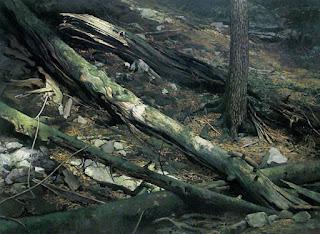 Oleos Bosques Pintura