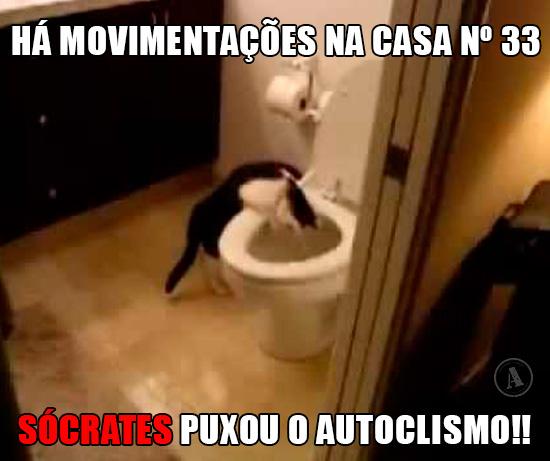 Gato na Sanita - Há movimentações na casa nº 33… Sócrates puxou o Autoclismo!!