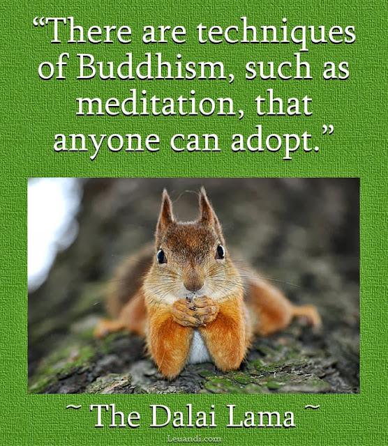Buddhism, Dalai Lama, life, light, meditation, spirit, squirrel