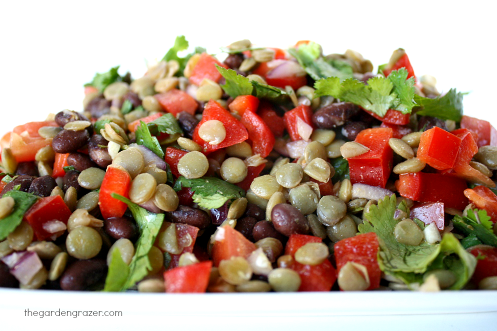 The Garden Grazer: Black Bean Lentil Salad with Cumin-Lime Dressing