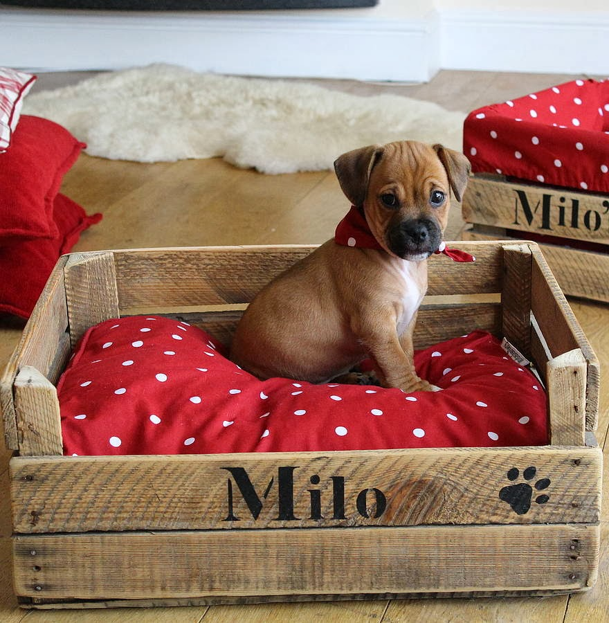 Wooden crate dog bed name personalised wood