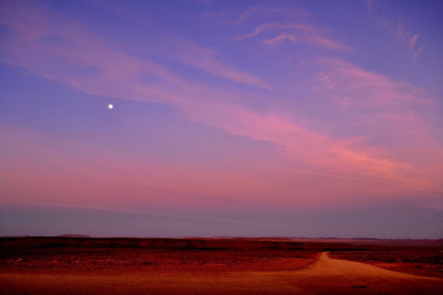 Moon rising with pink clouds and purple-blue sky