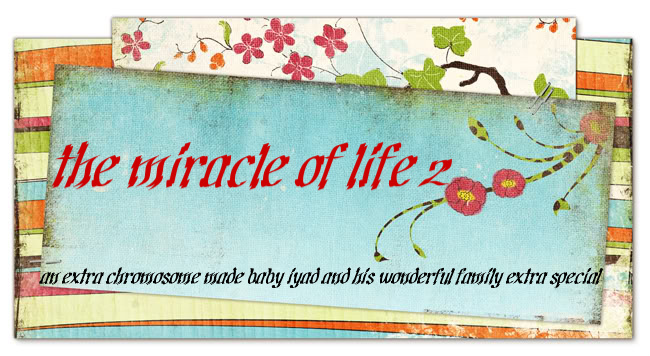the miracle of life 2