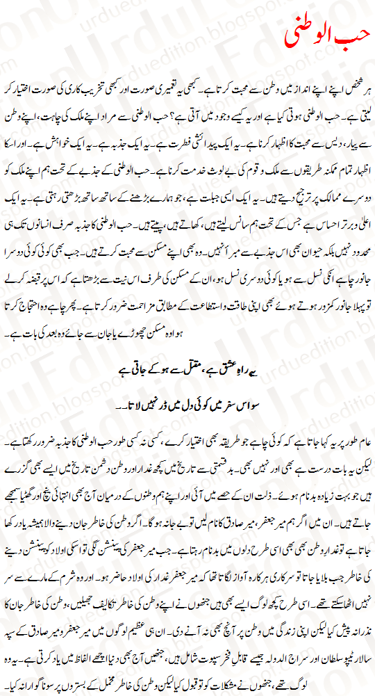 essay in urdu
