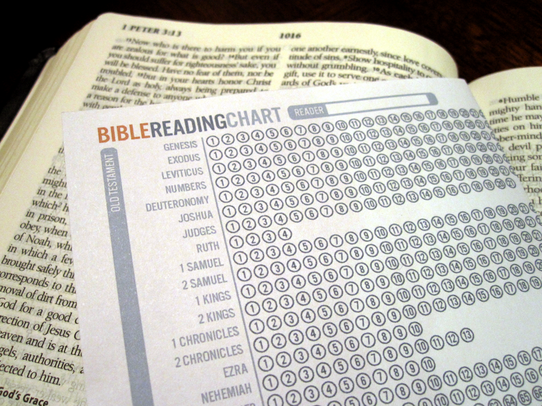 The things hannah loves bible reading chart