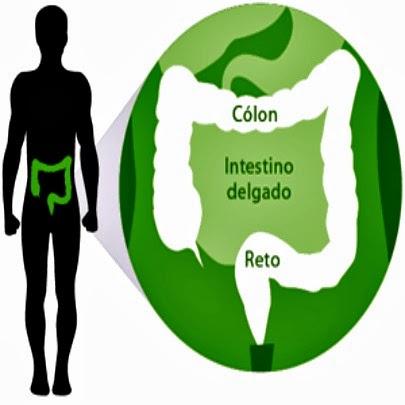 Tratamento não-cirúrgico para o câncer colorretal