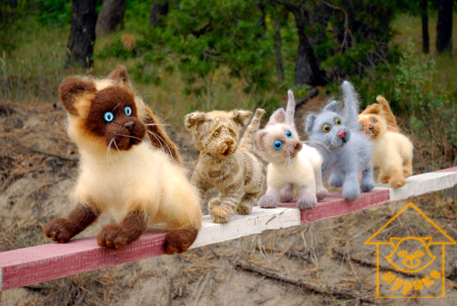 игрушки, мурико, кот, andmade, подарки, cat, мимими, амигуруми, котята
