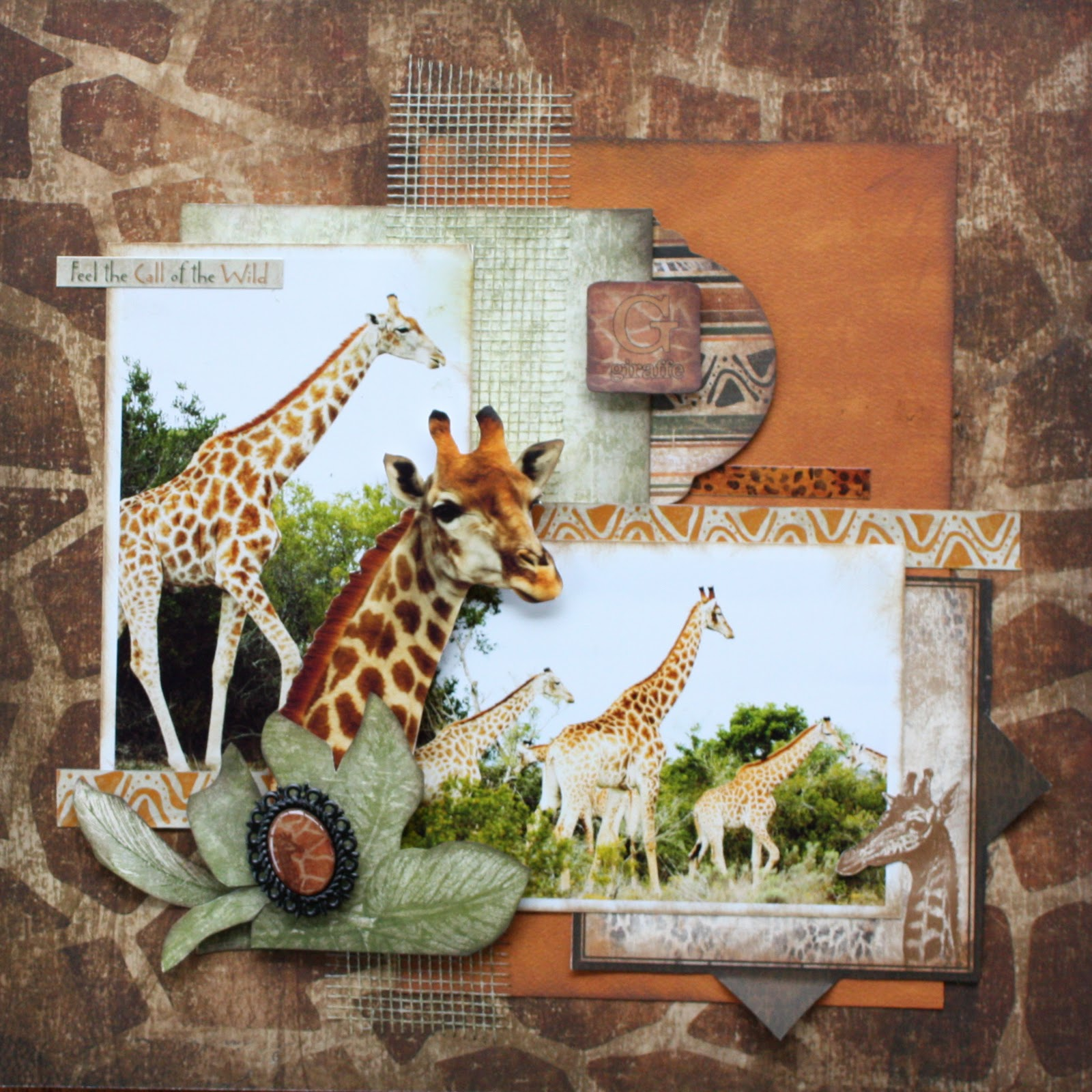 Zoo animal scrapbook ideas - Wet Weather Timetable Bobunny Zoology Layouts