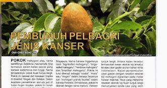 PENAWAR KANSER