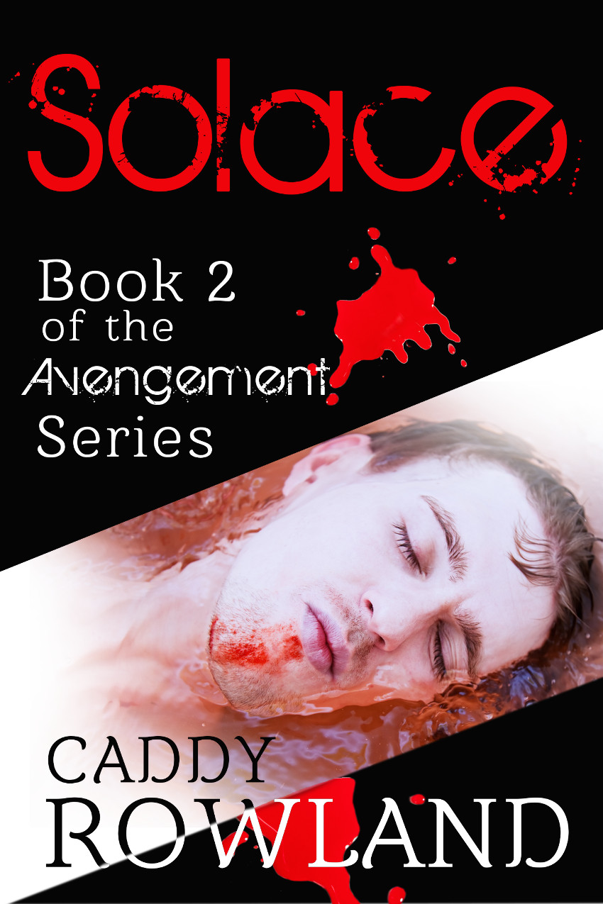 The Avengement Series (Book 2)