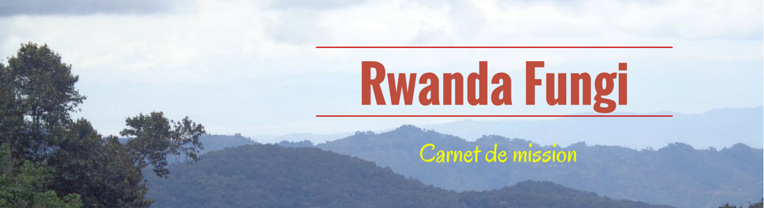 Rwanda Fungi 2015