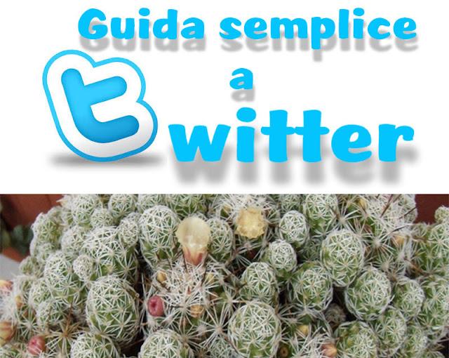 guida semplice all'utilizzo di twitter