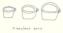 Binowee のsucculent pots
