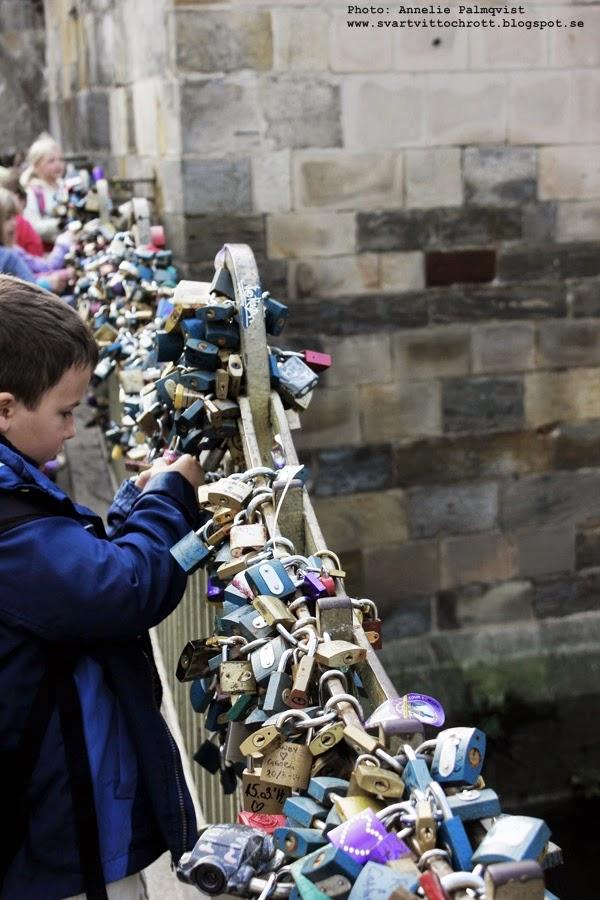 bro med fastlåsta lås för att hålla kvar kärleken, låsen, prag, tjeckien, huvudstad