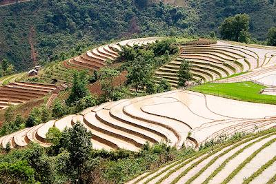 Tempat Wisata Alam Sa Pa Terraces - Vietnam