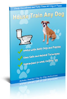 Successfully Potty Train Your Dog