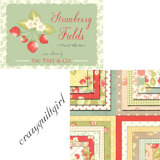 Moda STRAWBERRY FIELDS Quilt Fabric by Fig Tree Quilts