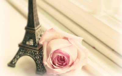 Eiffel tower and rose