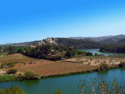 Vine a Castellet