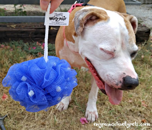 Absorbine ShowSheen Woof Pouf makes bath time easy and fights tough odors on dogs!