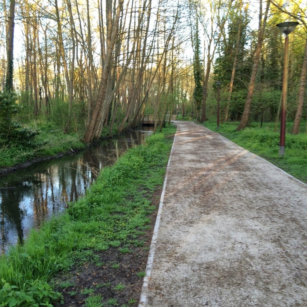 Jan op weg naar compostela: dag 19: troyes   forêt chenu (27,3km ...