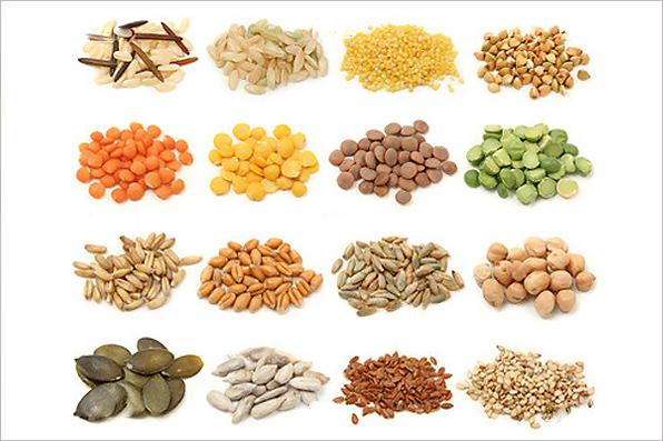 El mundo de las plantas plantas alimenticias for Plantas hortalizas ejemplos