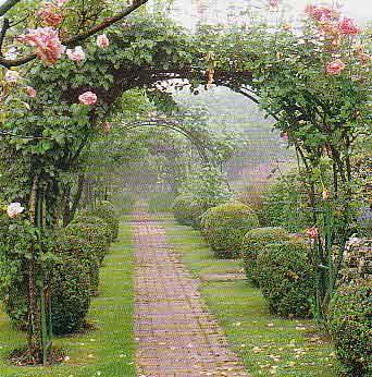 Arte y jardiner a arbustos y plantas trepadoras en el jard n for Arcos de jardin