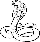 Animales para colorear: Cobras