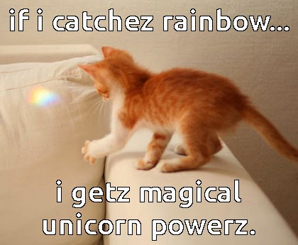 cat meme of rainbow