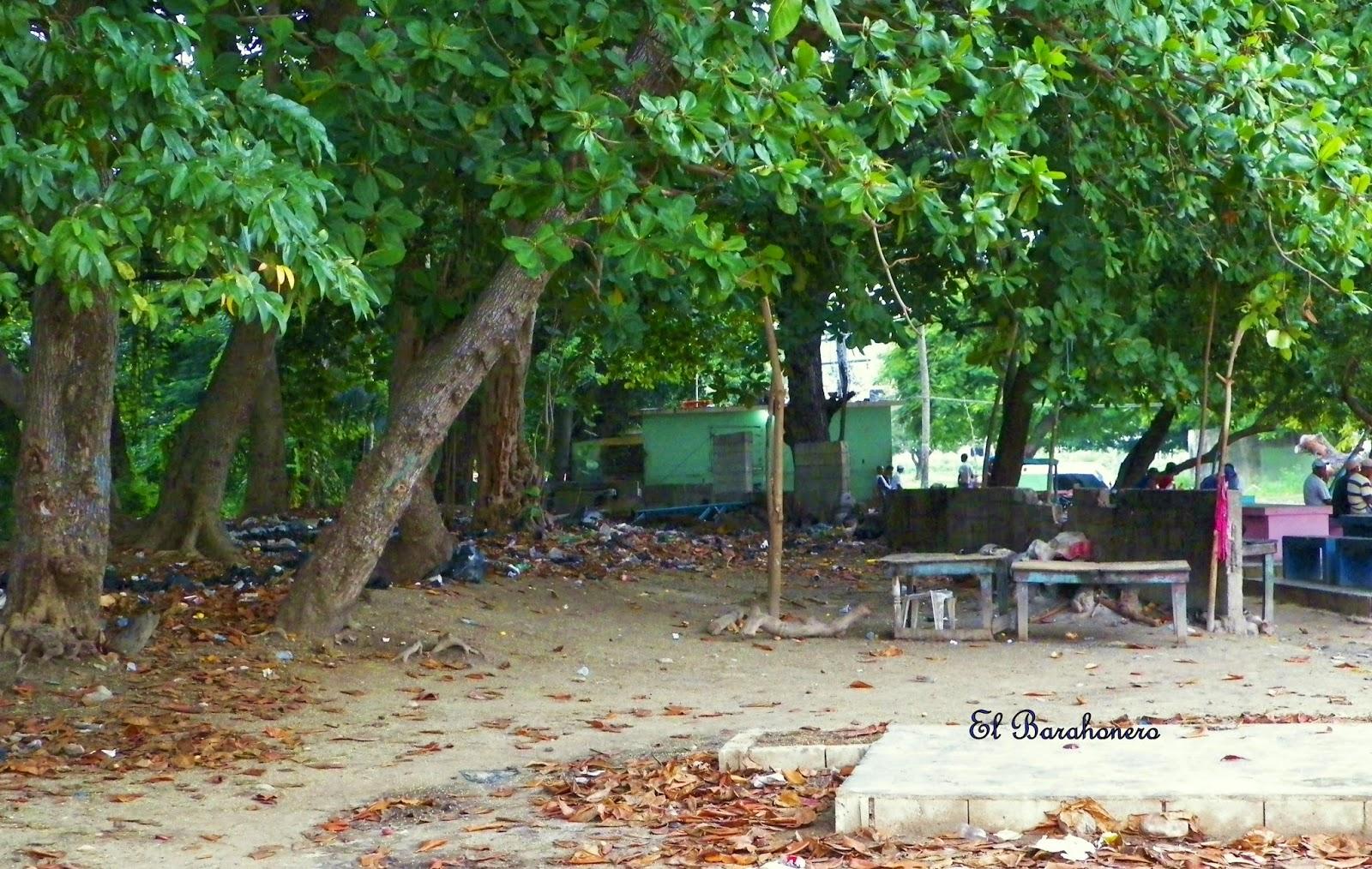 En comedores de la playa palito seco de barahona no hay for Comedores chiquitos
